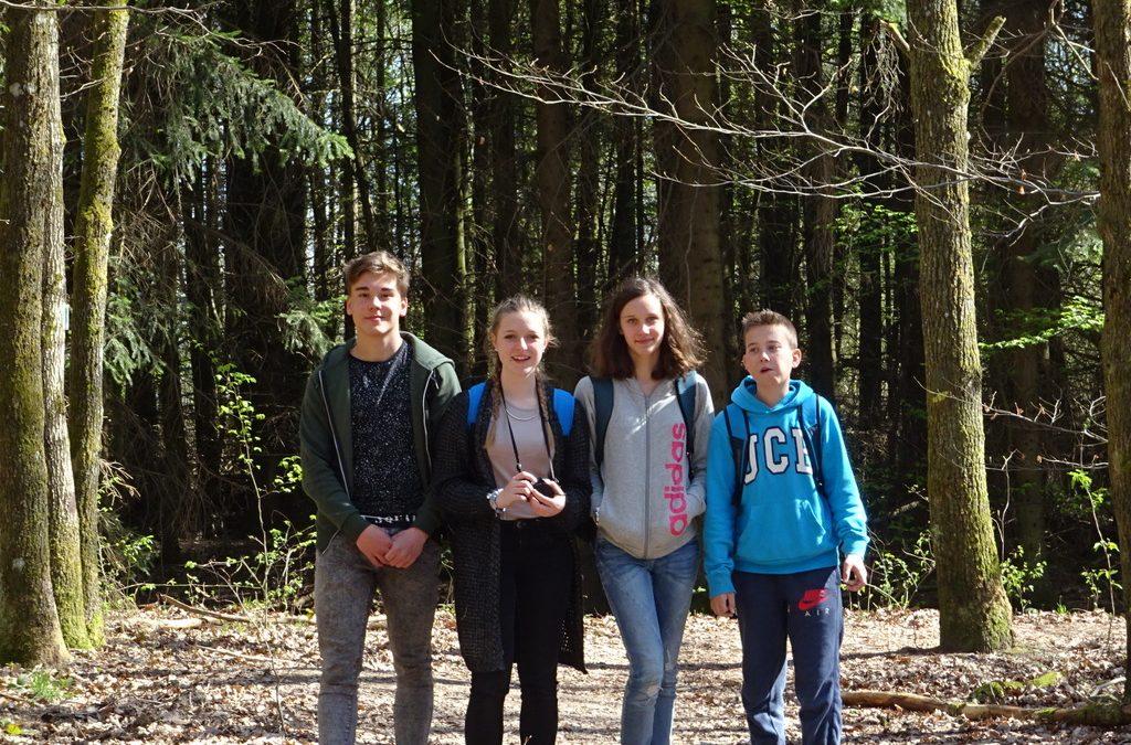 Začutili smo gozd